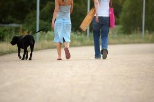 sacar a pasear al perro